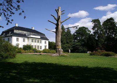 Palæet
